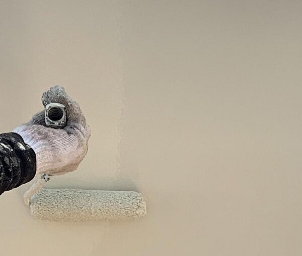 群馬県前橋市 K様邸 屋根塗装・外壁塗装・付帯部塗装 軒天、破風板、雨樋、モールの塗装 ジョンキングNAD (7)