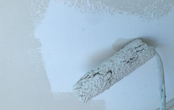 群馬県前橋市 K様邸 屋根塗装・外壁塗装・付帯部塗装・防水工事 塀、軒天塗装 ジョンキングNAD (5)