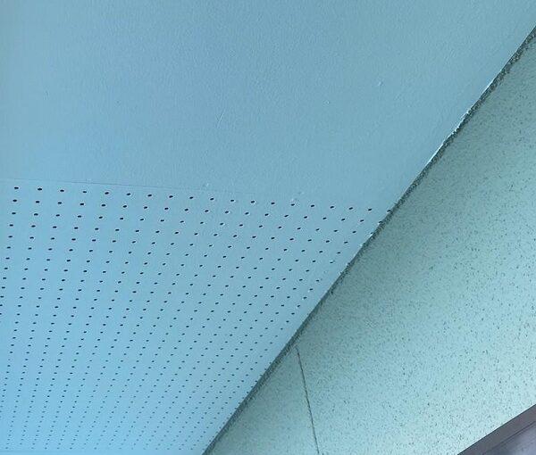 群馬県前橋市 N様邸 外壁塗装・防水工事 軒天塗装 庇塗装 (1)