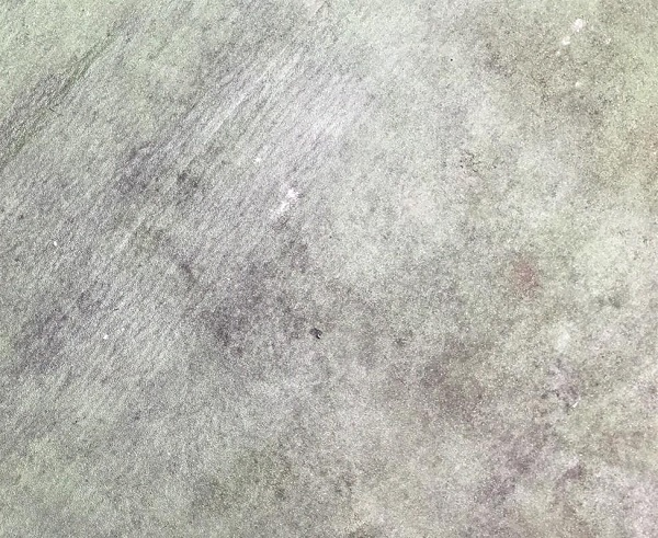 群馬県前橋市 N様邸 外壁塗装・防水工事 ウレタン防水 (2)