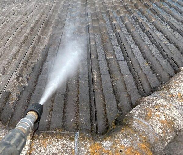 群馬県桐生市 I様邸 屋根塗装・外壁塗装 カビ、苔を放置すると バイオ洗浄とは (2)